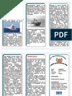 Triptico_civica_#1_marina de Guerra Del Peru