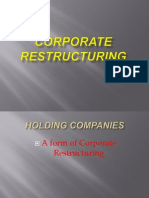 Ppt on Holding Co.