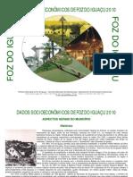 Perfil Socio Economico Foz Do Iguacu