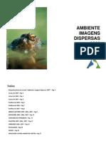 Ambiente, Imagens Dispersas 2008 - Dossier de Apresentação