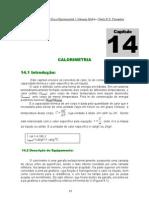 cap14-calorimetria