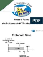 Passo a Passo IATF_compactada