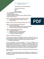 Direito Constitucional II - Direitos Fundamentais