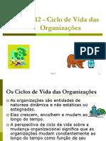 To-12 - Os Ciclos de Vida Das Organizacoes