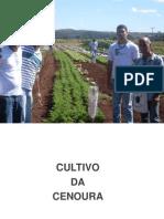 Olericultura ApA3 Cenoura 01-2011