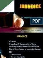 Jaundice 1