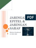 Jaringan Epitel & Jaringan Saraf