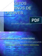 parasitos i