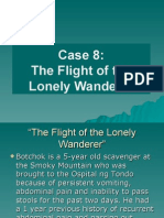 The Flight of the Lonely Wanderer