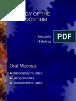Biology of the um
