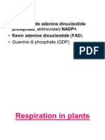 Ch-11.Respiration in Plants