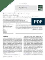 11 - farma benzonphenonas