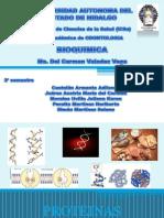 estructura_1_y_2_de_proteinas