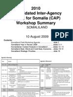 090810 Somaliland Workshop-Summary
