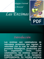 enzimas-10