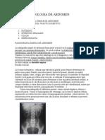 Radiologia de abdomen