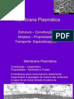 Membrana Plasmática MO!