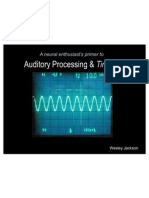 AuditoryProcessing&Tinnitus 01