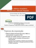 Setor Elétrico Brasileiro - Ildo Sauer