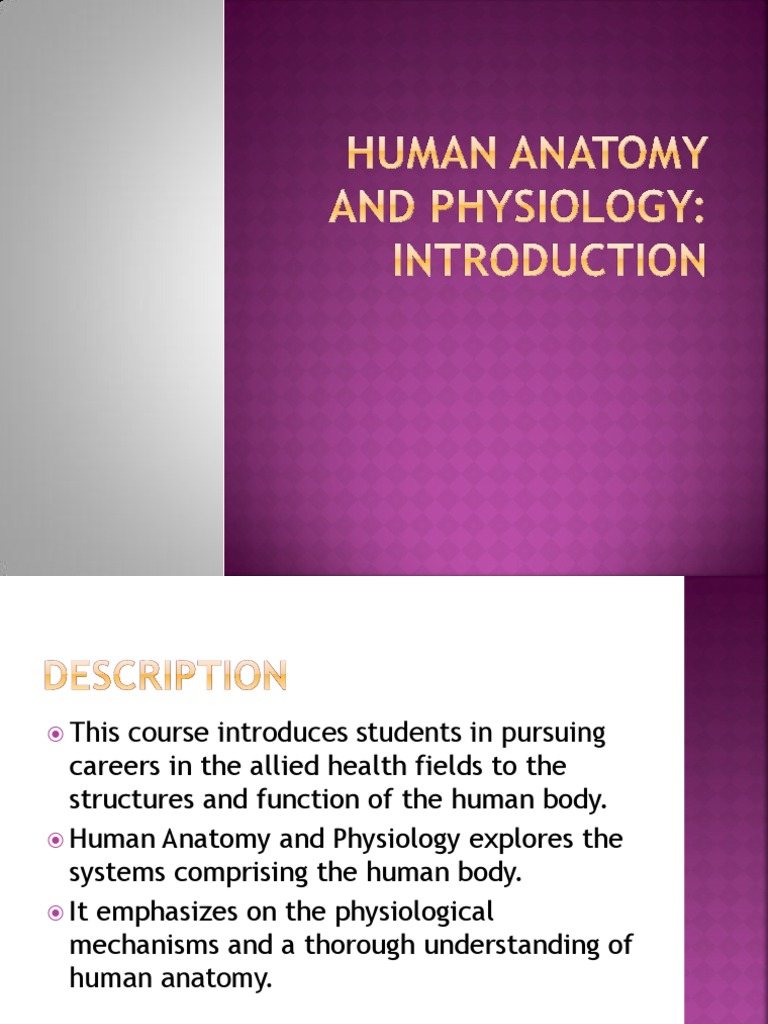 Human Anatomy and Physiology Introduction | Stimulus (Physiology ...