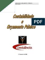 Contabilidade e Orçamento Público - Prof