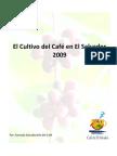 EL CULTIVO DEL CAFE EN EL SALVADOR 2009