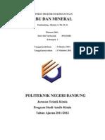 Laporan Praktikum Kimia Pangan Abu Mineral Dewi