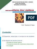 Metabolismo Dos Lipideos 1