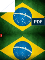 Flash Camp Brasil.small