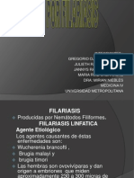 Expocion de Filariasisi Micro IV