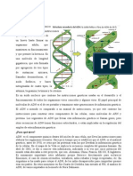 ADN_Resina