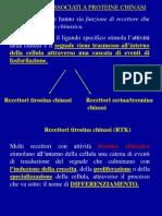 lezione Trasduz. segn. 14-11-11