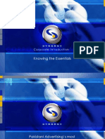 Synergy Presentation