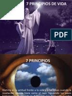 7 PRINCIPIOS DE VIDA