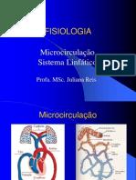 Microcirculaçao Sistema Linfatico