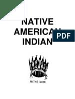 Festival Native American[1]