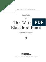 Witch of Blackbird Pond