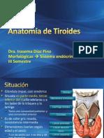 2. Anatomía de Tiroides