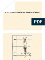 Esofago1 (1)