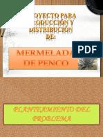 proyectomermeladadepenco-100401004037-phpapp01