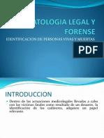 Estomatologia Legal y Forense