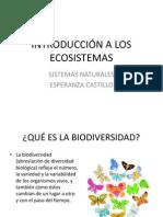ECOSISTEMAS S NATURALES