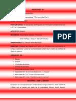 Protocolo N 7