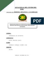 Presentacion Formal de Los Proyectos de Inversion Publica Dentro Del Snip