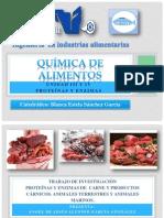 Expo de Proteinas Carnes