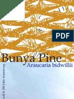 Bunya Pine