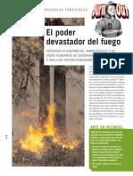 El poder devastador del fuego, incendios forestales