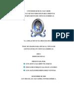 54825215 Tesis Procesal Penal La Apelacion en El Proceso Penal