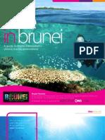 Dive in Brunei