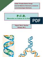 Semana 13.5. PCR - E. Marin
